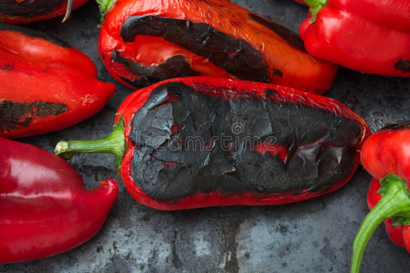 Grilled paprika royalty free stock images