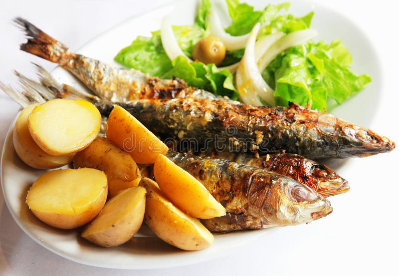 Grilled portugal sardine fish royalty free stock photo