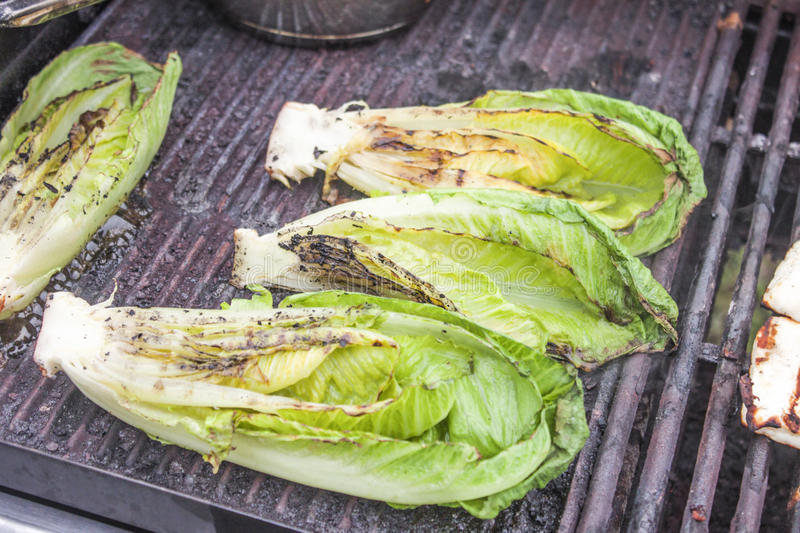 Grilled romaine salad. Grilled, green romaine salad, on a barbeque royalty free stock photos