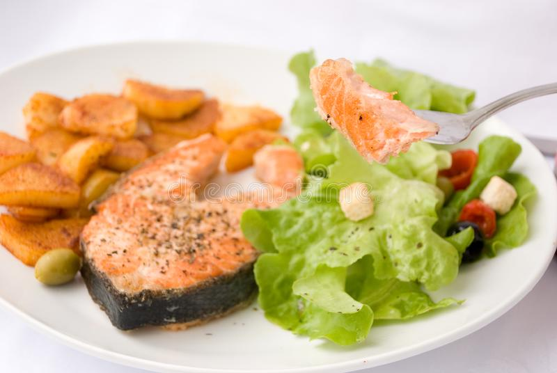Grilled Salmon with Lettuce 10 royalty free stock photography
