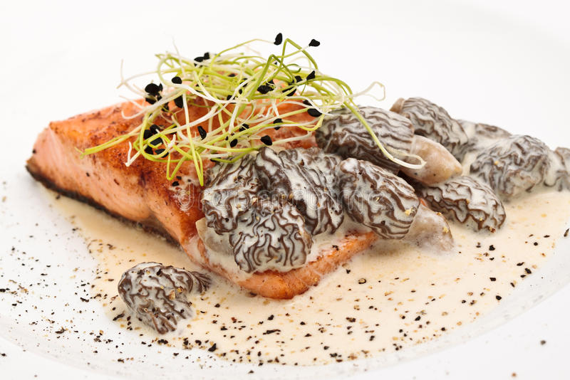 Grilled Salmon Steak With Morel. Salmon steak with morel and sauce served on a white plate royalty free stock photos