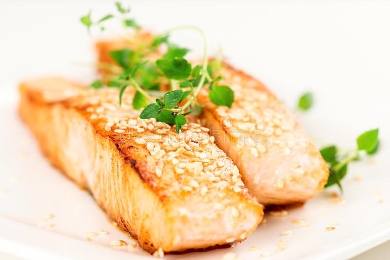 Grilled salmon on white plate shallow DOF. Grilled salmon, sesame seeds and marjoram on white plate. Studio shot stock photo
