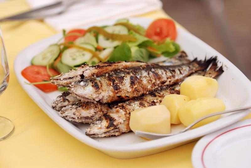 Grilled sardine. With potato and salad royalty free stock image