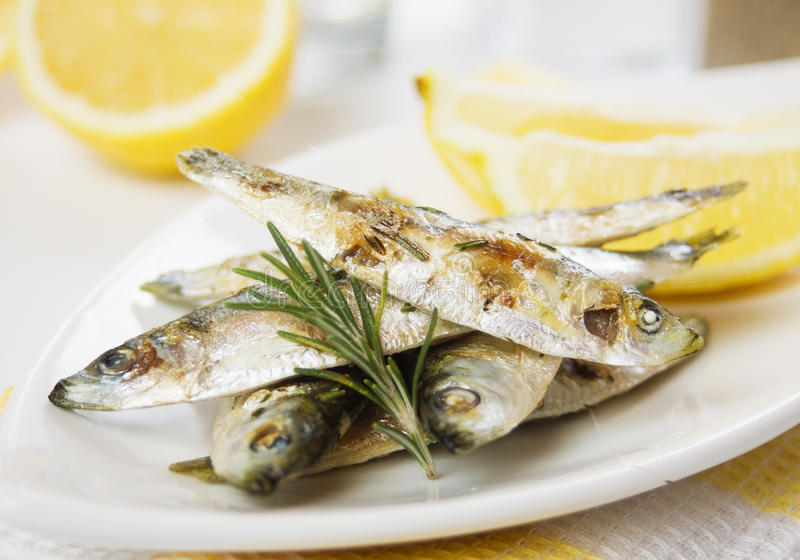 Grilled sardine fish. Served with rosemary and lemon stock images