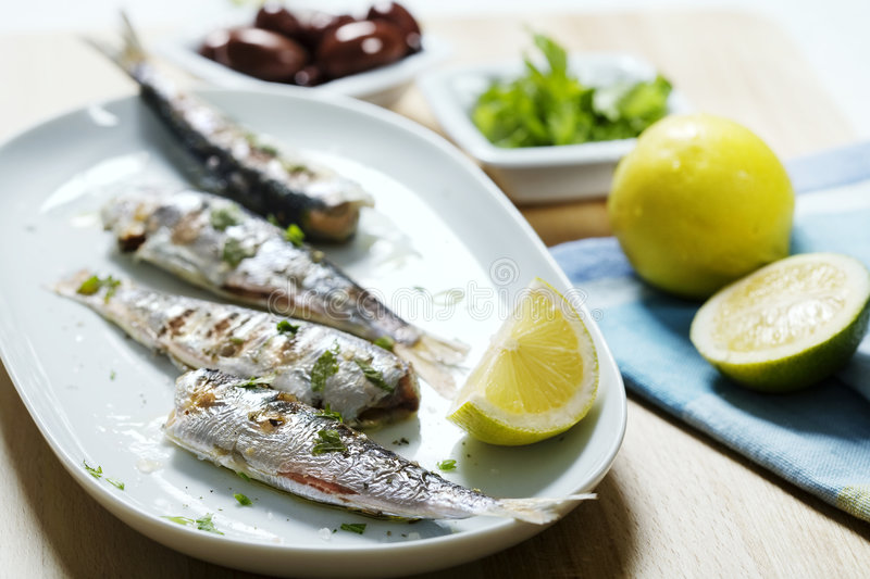 Grilled sardines. A plate of grilled sardines royalty free stock images