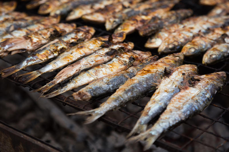 Grilled sardines. Closeup view on traditional catalan dish frying sardines stock images