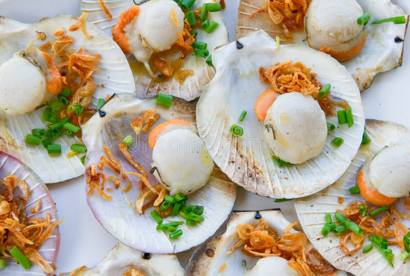 Download Grilled Scallops, Shallow Focus Stock Image - Image: 7917749