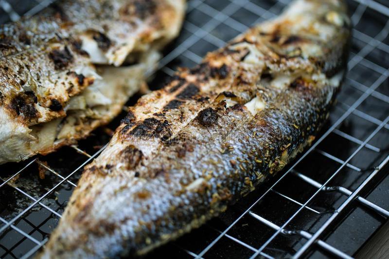 Grilled Sea Bass. Fresh Grilled Sea Bass at the Barbecue stock images