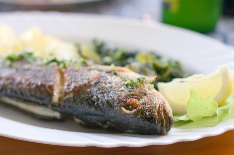 Grilled seabass. The European seabass, Dicentrarchus labrax grilled, served with tomato and chard royalty free stock photo