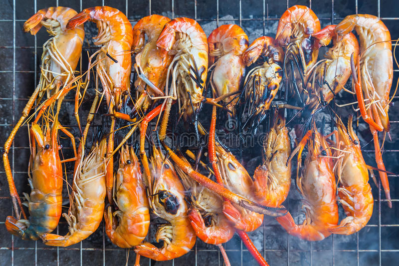 Grilled Shrimp stock image