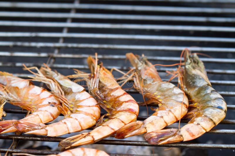 Download Grilled shrimp stock image. Image of meat, up, cooked - 39500523
