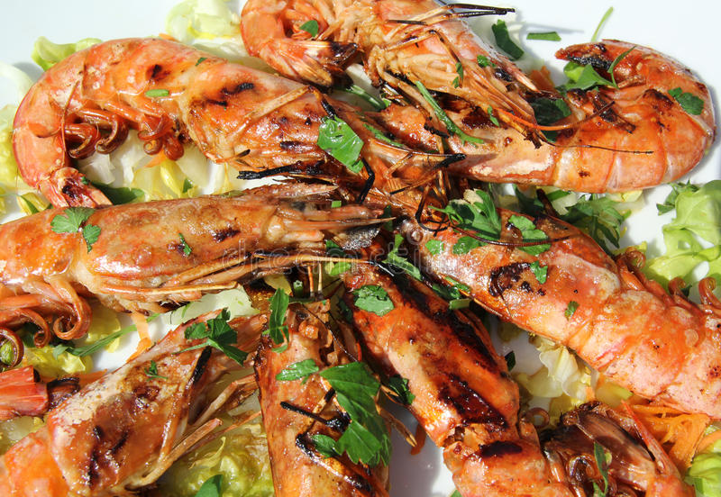 Download Grilled Shrimps Stock Photography - Image: 19386582