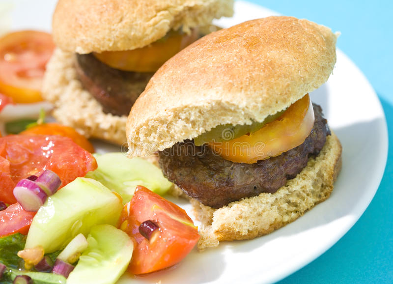 Download Grilled Sliders Hamburgers stock image. Image of onion - 25781355