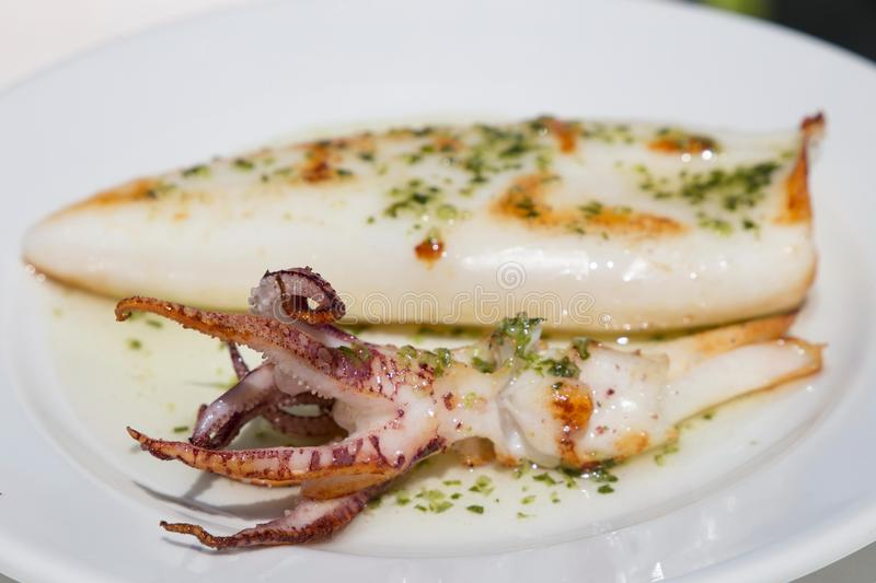 Grilled squids on plate Spain royalty free stock photo