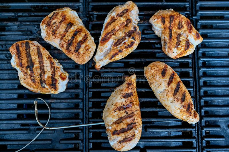 Grilled striped chicken on a grill in Sweden. June 2019 royalty free stock photo