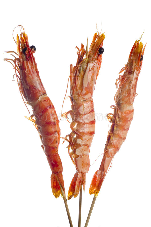 Free Grilled Tiger Prawn On Skewers Stock Photos - 3509993