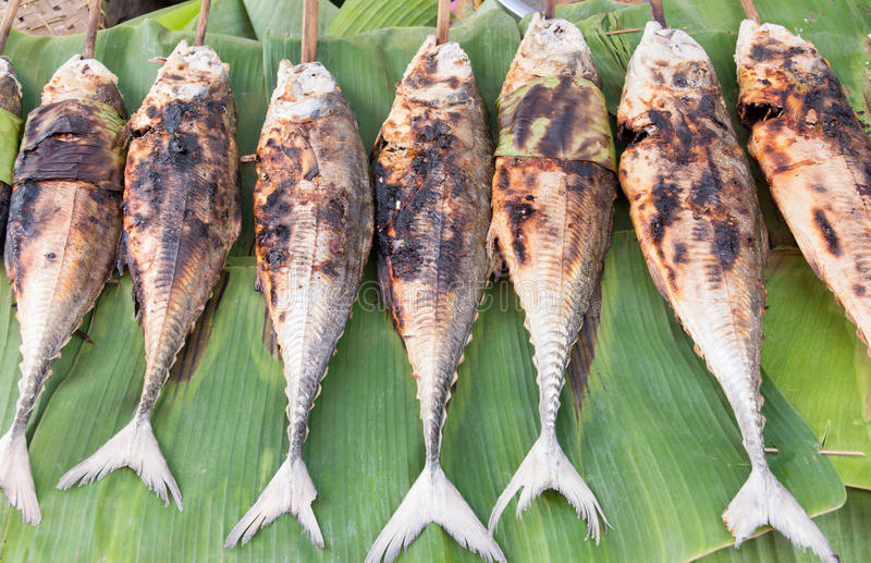 Grilled torpedo scad ( Finny scad ) fish - Thai food. Grilled torpedo scad (Finny scad, Finletted mackerel scad) fish - Thai food royalty free stock photography