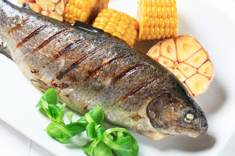 Download Grilled trout stock photo. Image of lunch, fish, sweet - 25228040
