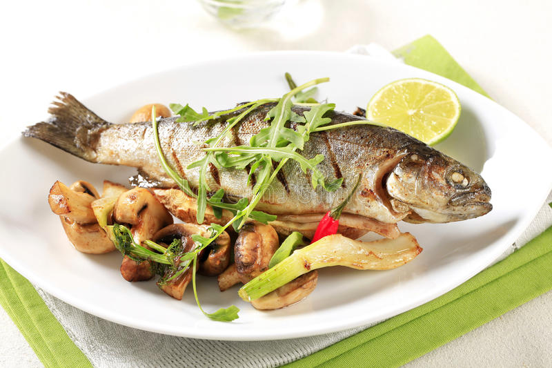 Grilled trout with mushrooms. Grilled trout served with button mushrooms stock images