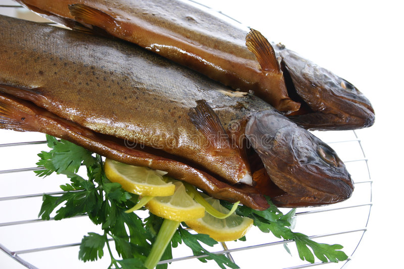 Download Grilled Trouts stock image. Image of grilled, leek, glass - 3093195