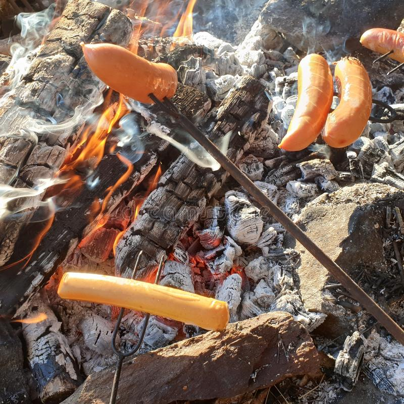 Griller des saucisses sur le feu campant photos libres de droits