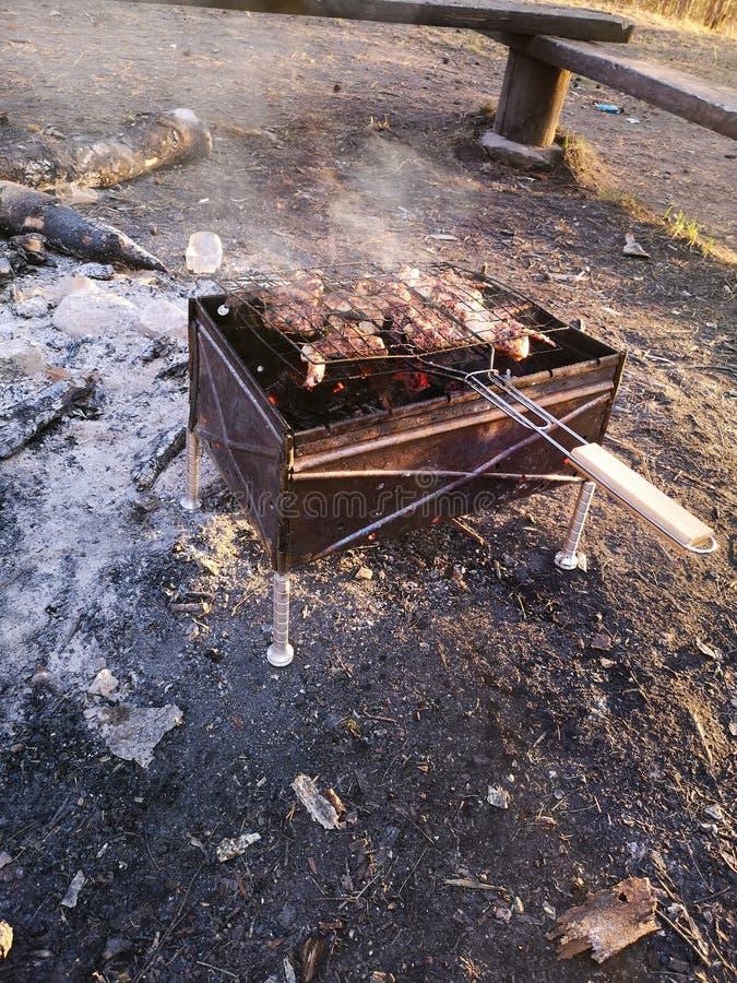 Grillez, en faisant frire la viande fra?che, barbecue de poulet, saucisse, chiche-kebab, hamburger, les l?gumes, BBQ, barbecue, f photo stock