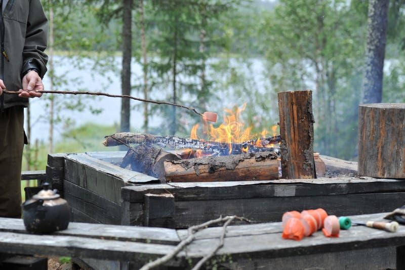 grillfest royaltyfri bild