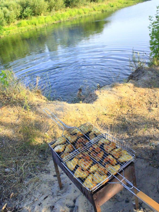 Grillfest från hönas köttmatlagning i naturen royaltyfri bild