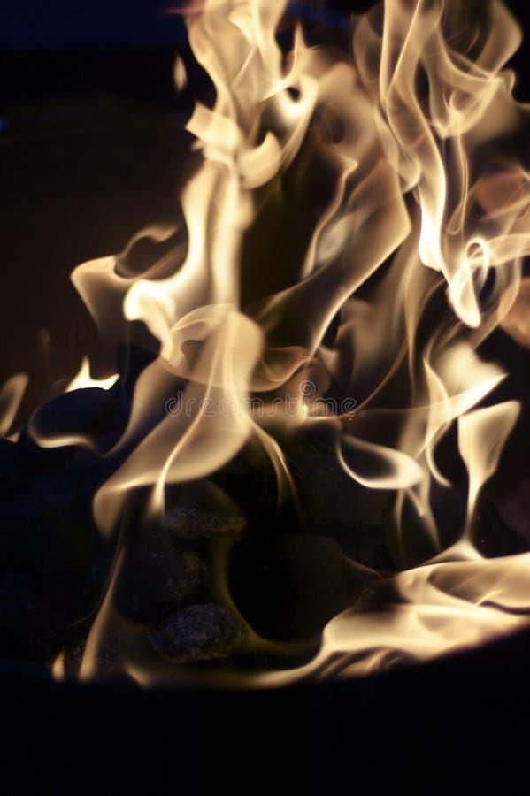 grillfesten flamm gallret royaltyfri fotografi