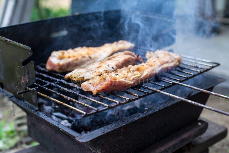 Grillfestgriskött och chickent galler i trädgården som lagar mat för läckert royaltyfri fotografi