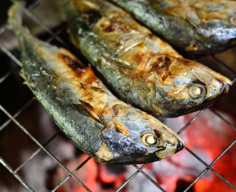 Grilling of mackerel. Over fire royalty free stock photo