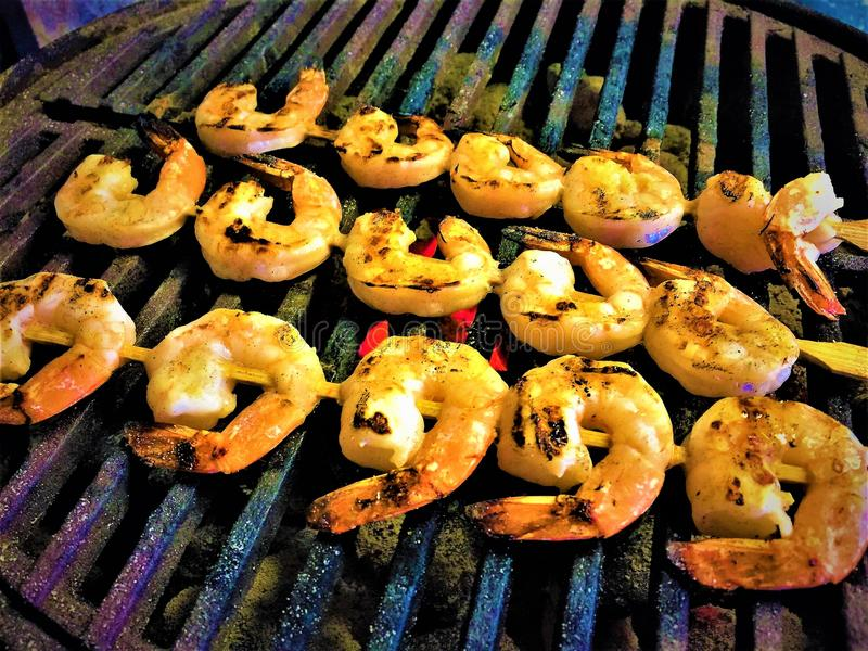 Grilling Shrimp Scampi royalty free stock images
