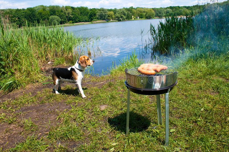 Download Grilling at summer weekend stock image. Image of outdoor - 14852183