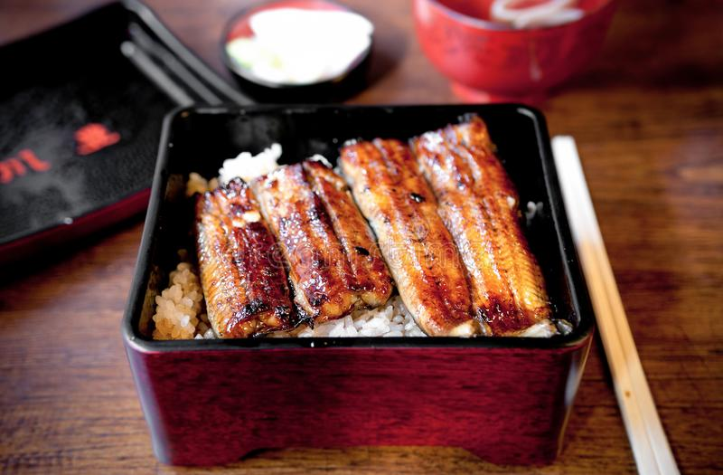 Grilling Unagi eel for Japanese Unagi donburi rice recipe. Charcoal grilled Unagi eel over rice or Japanese Unagi donburi Unadon rice recipe, famous street food royalty free stock photo