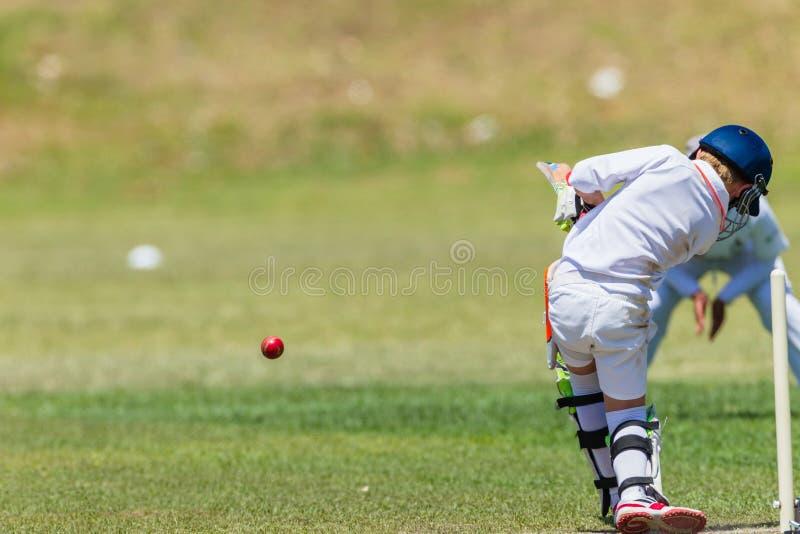 Grillo Fielder Batsman Action fotos de archivo