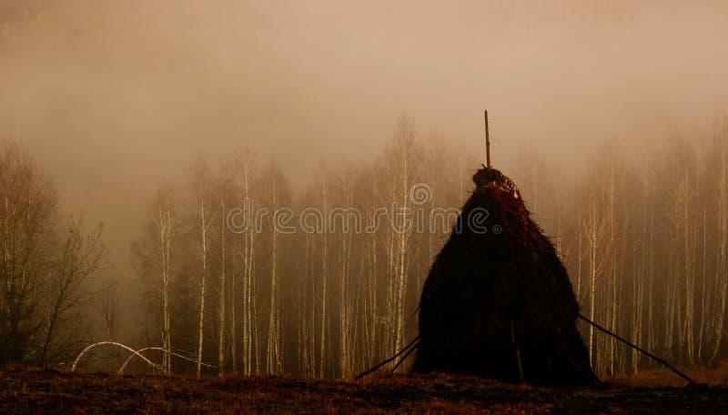 Grimm wieśniaka landacape zdjęcie royalty free