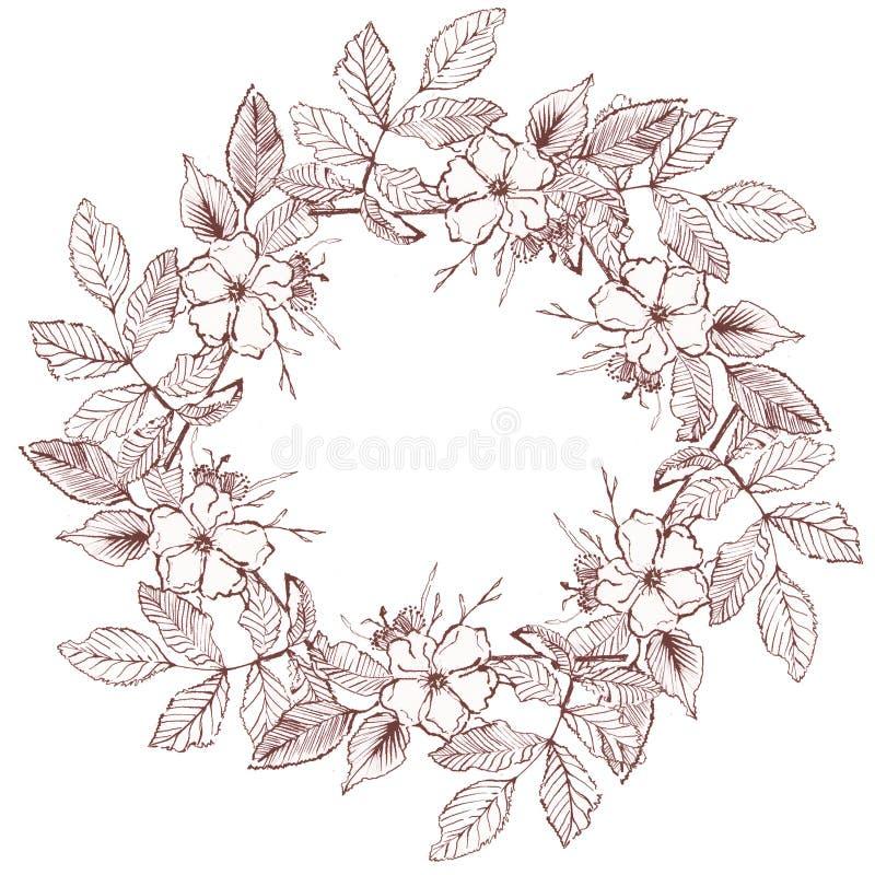 Grinalda botânica com a flor da tração da mão fotos de stock royalty free