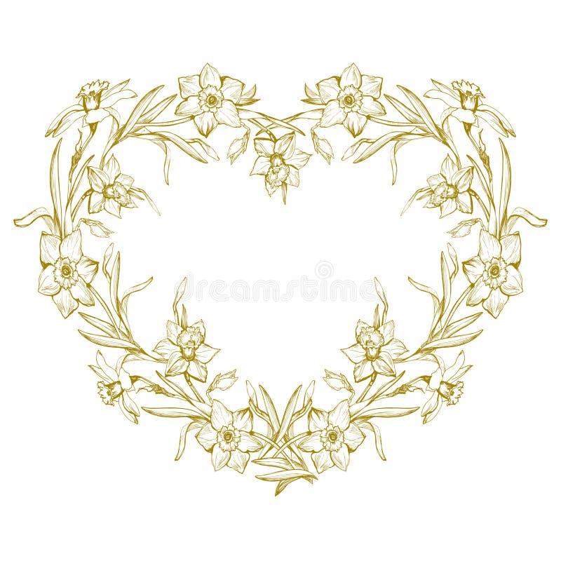 Grinalda botânica do esboço com o narciso amarelo tirado mão das flores, narciso ilustração royalty free