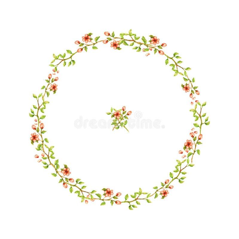 A grinalda da aquarela de ramos finos com as folhas e o pêssego claro macio floresce com o bonito da beleza das pétalas isolados  fotos de stock royalty free