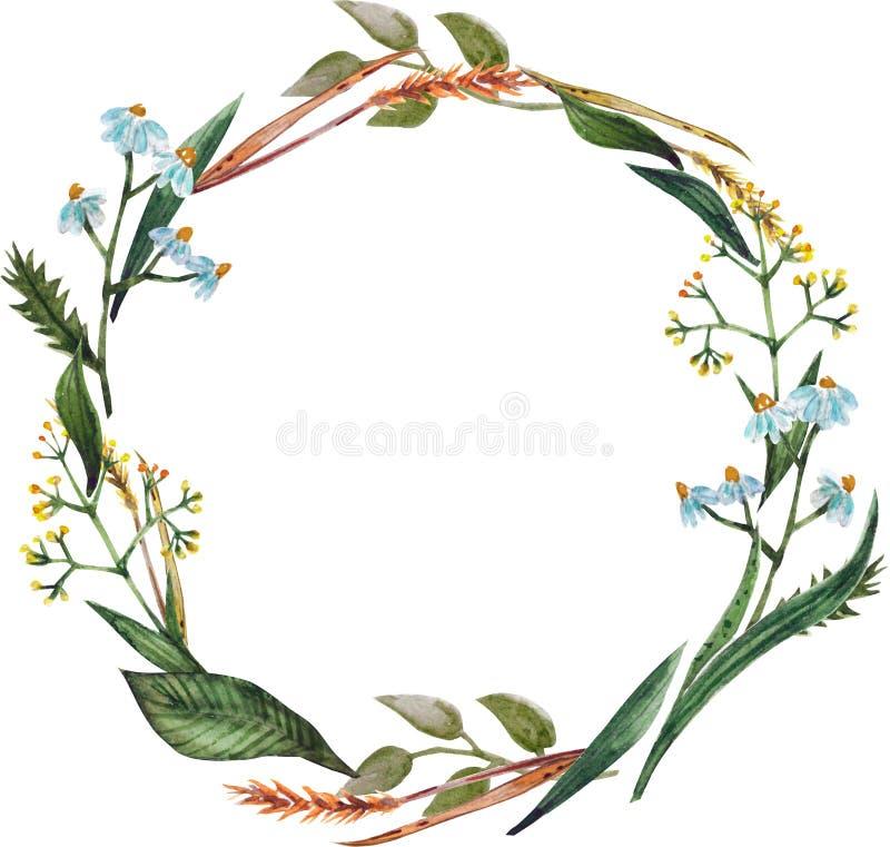 Grinalda da aquarela do outono das flores ilustração royalty free