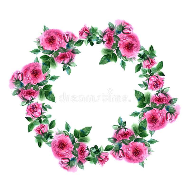 Grinalda da flor de Rosa Beira floral do círculo Quadro da aquarela ilustração stock