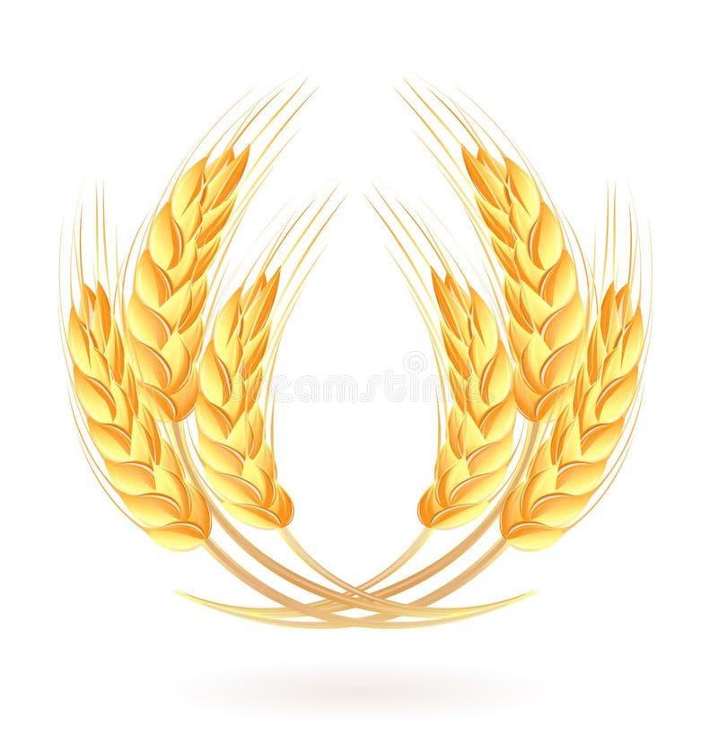 Grinalda das orelhas do trigo