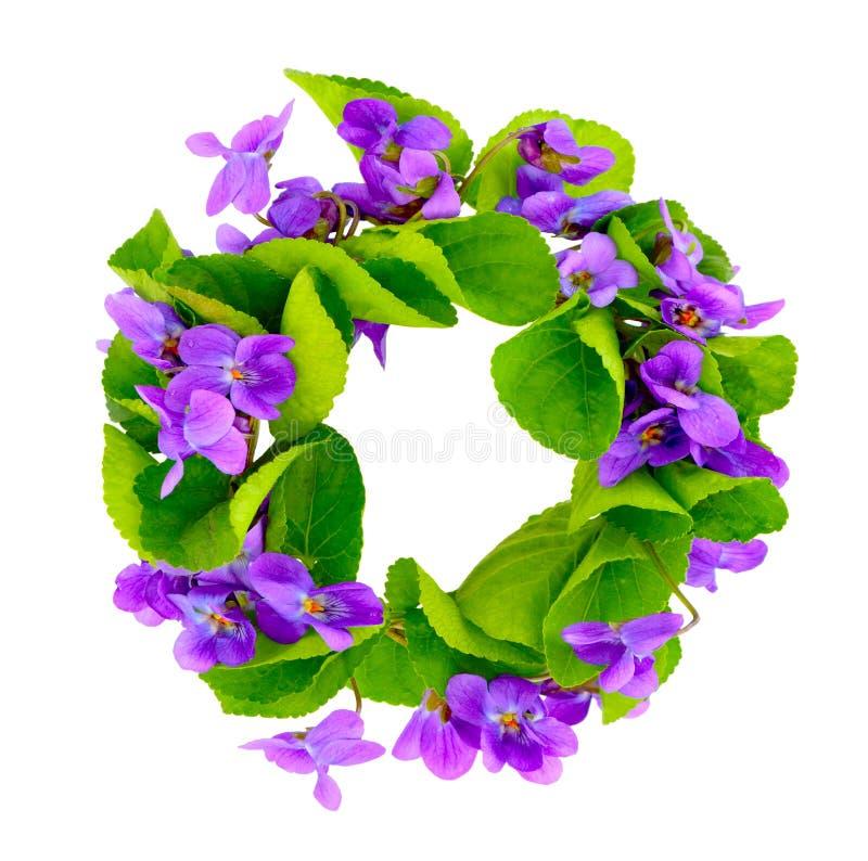 Grinalda de violetas da floresta. foto de stock royalty free