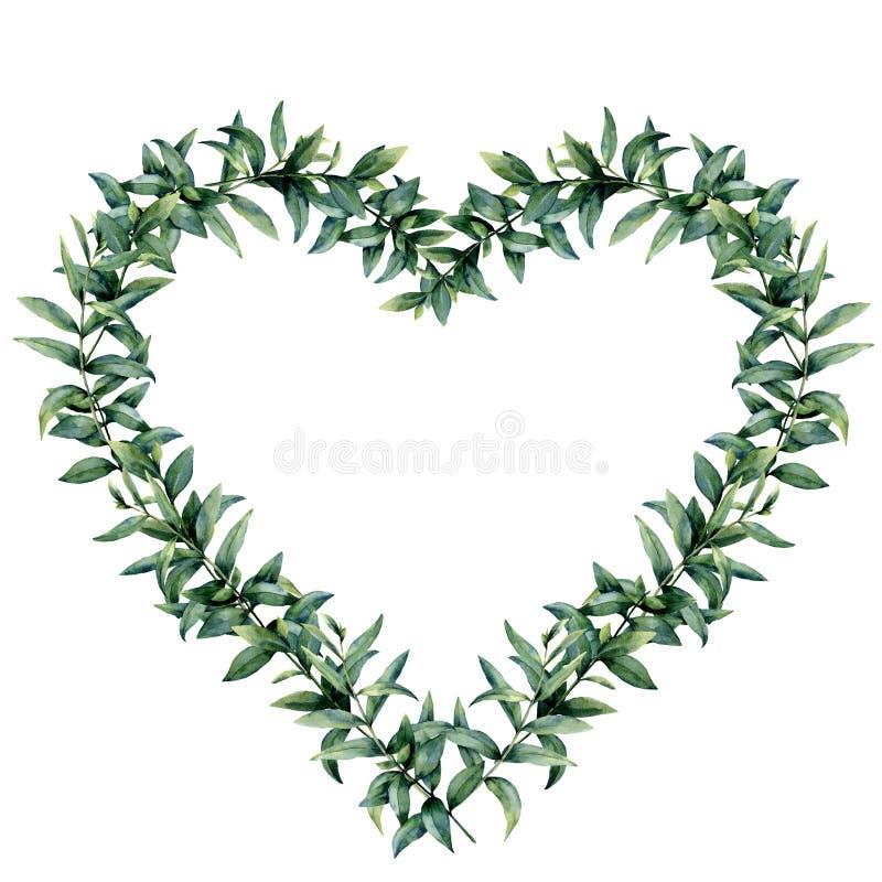 Grinalda do coração do eucalipto da aquarela Beira pintado à mão com o ramo e as folhas do eucalipto isolados no fundo branco ilustração royalty free