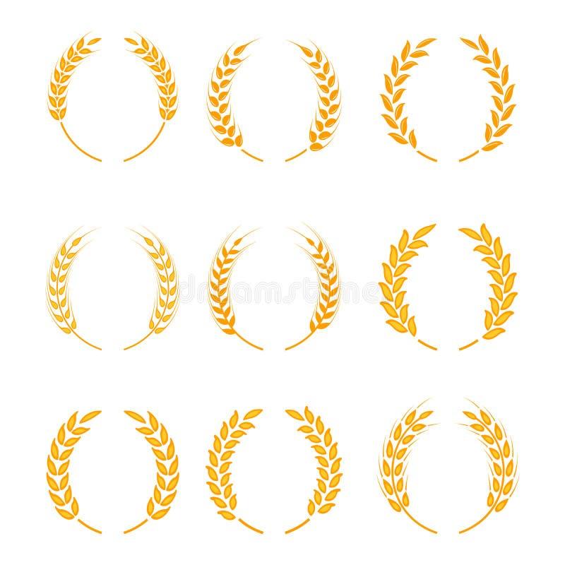 Grinalda do louro do ouro - um símbolo do vencedor Orelhas do trigo ou ícones do arroz ajustados ilustração royalty free