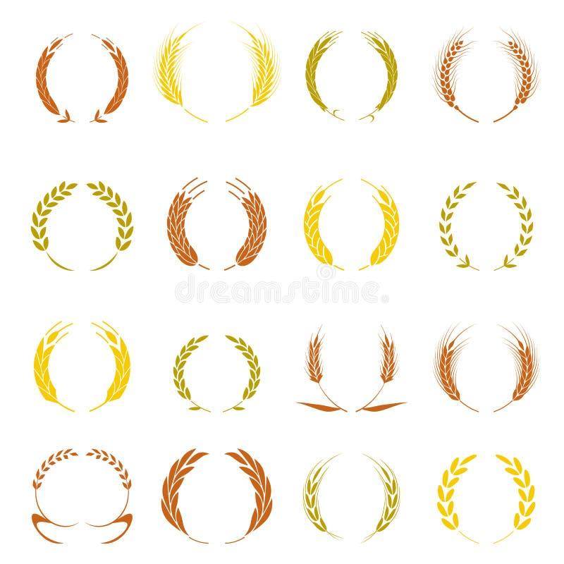 Grinalda do louro do ouro - um símbolo do vencedor Orelhas do trigo ou ícones do arroz ajustados ilustração stock