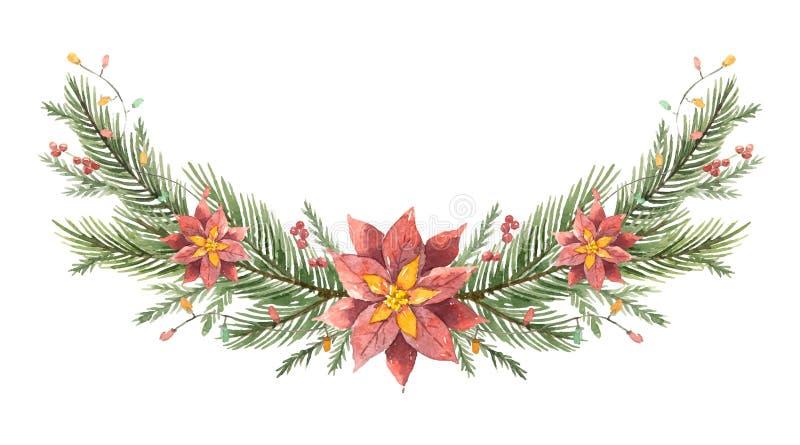 Grinalda do Natal do vetor da aquarela com ramos do abeto e poinsétias da flor ilustração stock