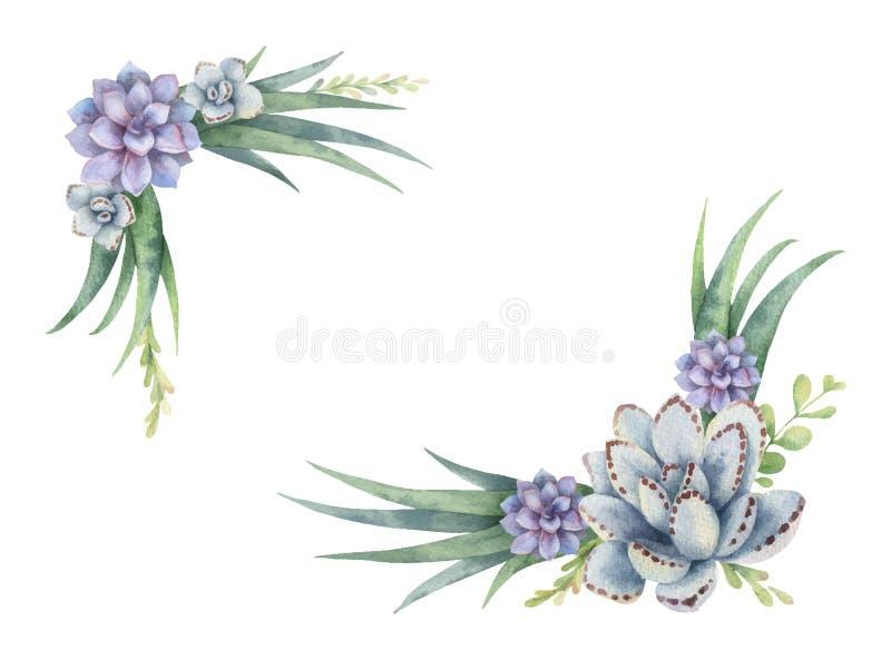 Grinalda do vetor da aquarela dos cactos e das plantas suculentos isolados no fundo branco ilustração do vetor