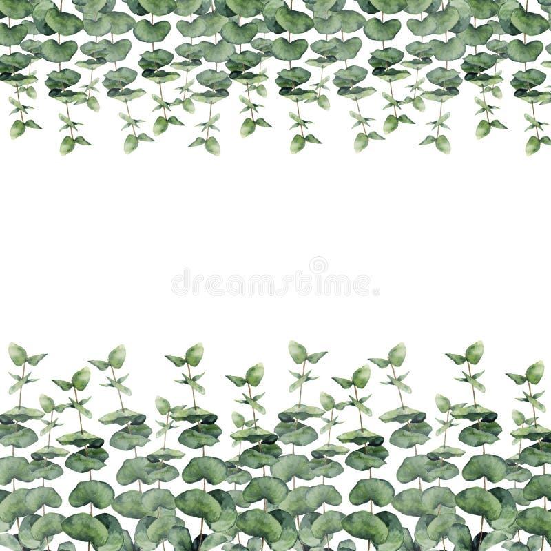 A grinalda floral da aquarela com eucalipto, folhas do eucalipto do bebê e peônia floresce Beira floral pintado à mão com ramos,  ilustração do vetor
