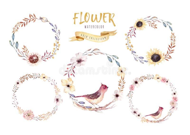 Grinalda floral da flor do boho da aquarela Quadro natural do Watercolour: folhas, pena e pássaros Isolado no fundo branco ilustração do vetor